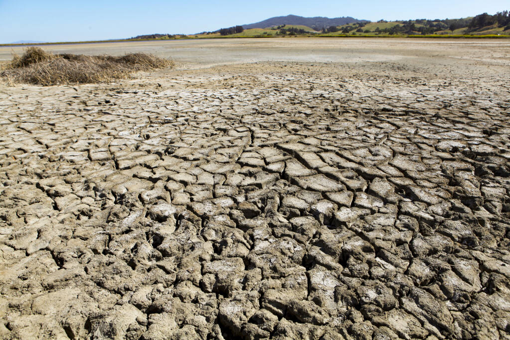 The Petaluma wetlands of Shollenberger Park were already desparately dry in May, when Gov. Gavin Newsom declared a drought emergency in Sonoma County. Amid the ongoing drought, Petaluma City leaders on Monday ratcheted up water restrictions. (CRISSY PASCUAL/ARGUS-COURIER STAFF)