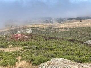 Two suspected of starting Highway 1 fire while smoking meth. (Sonoma County Sheriff's Office)