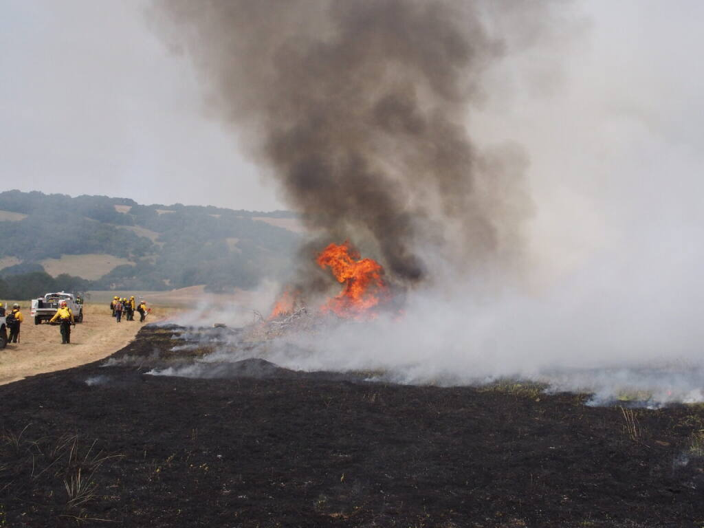 Smoke plumes rise at a 2020 prescribed burn at the Van Hoosear Wildflower Preserve. (Courtesy Sonoma Ecology Center)