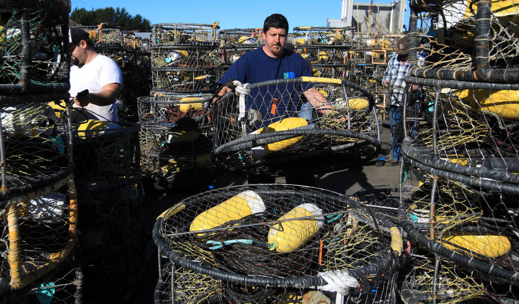 Matt Anello stacks crab pots in preparation for Dungeness crab season in Bodega Bay on Tuesday, Jan. 5, 2021. (Kent Porter / The Press Democrat)