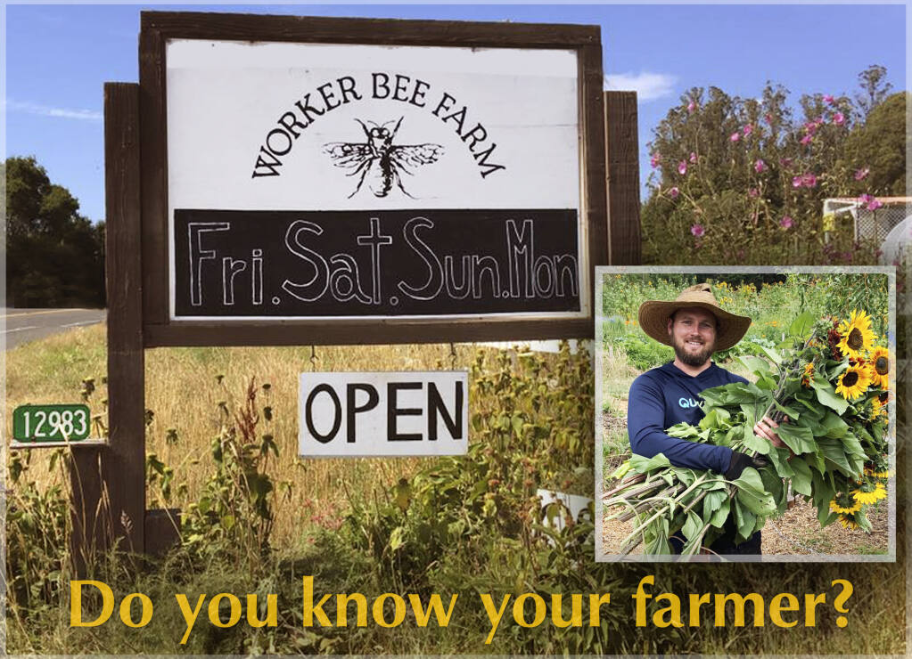 Workers Bee Farm has a wide variety of vegetables, herbs, fruits and extras like eggs and  flowers - all fresh and embodies a biodiverse and organic methodology. Safety measures are in place.
