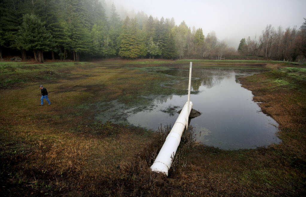 Korbel's John Bidia inspects a nearly dry irrigation and frost protection pond at a Korbel vineyard in Guerneville, Thursday, Jan. 14, 2021.   (Kent Porter / The Press Democrat) 2021