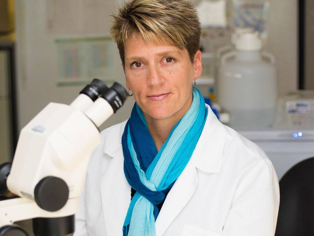 Malene Hansen is named professor and chief scientific officer of Novato's The Buck Institute for Research on Aging. (courtesy of Sanford Burnham Prebys Medical Discovery Institute)