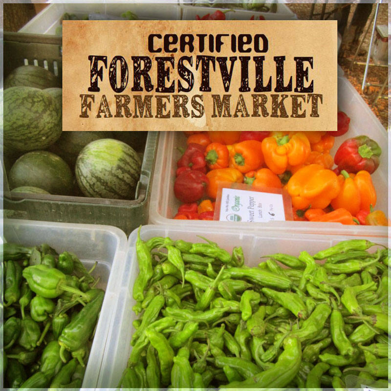 Stop on by to pick up your veggies, check out some crafts and there will even be food vendors. Image: forestvillechamber.org
