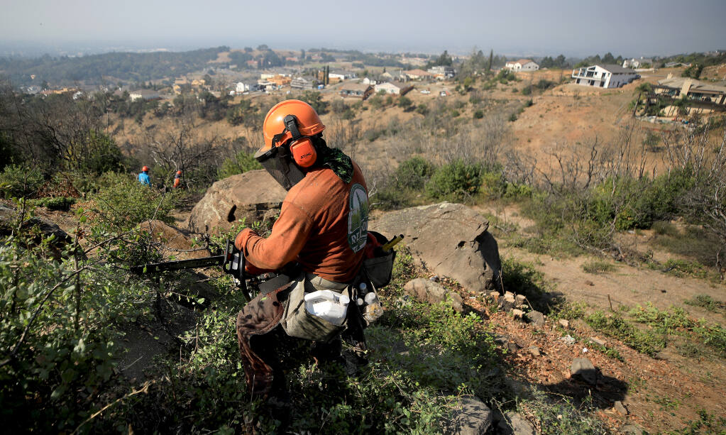 Omar Rivas cuts back brush that has grown back in a high fire severity zone in Fountaingrove, near Rincon Ridge West, Monday, Sept. 21, 2020, in Santa Rosa.  Fountaingrove was heavily impacted by the 2017 Tubbs fire. (Kent Porter / The Press Democrat) 2020