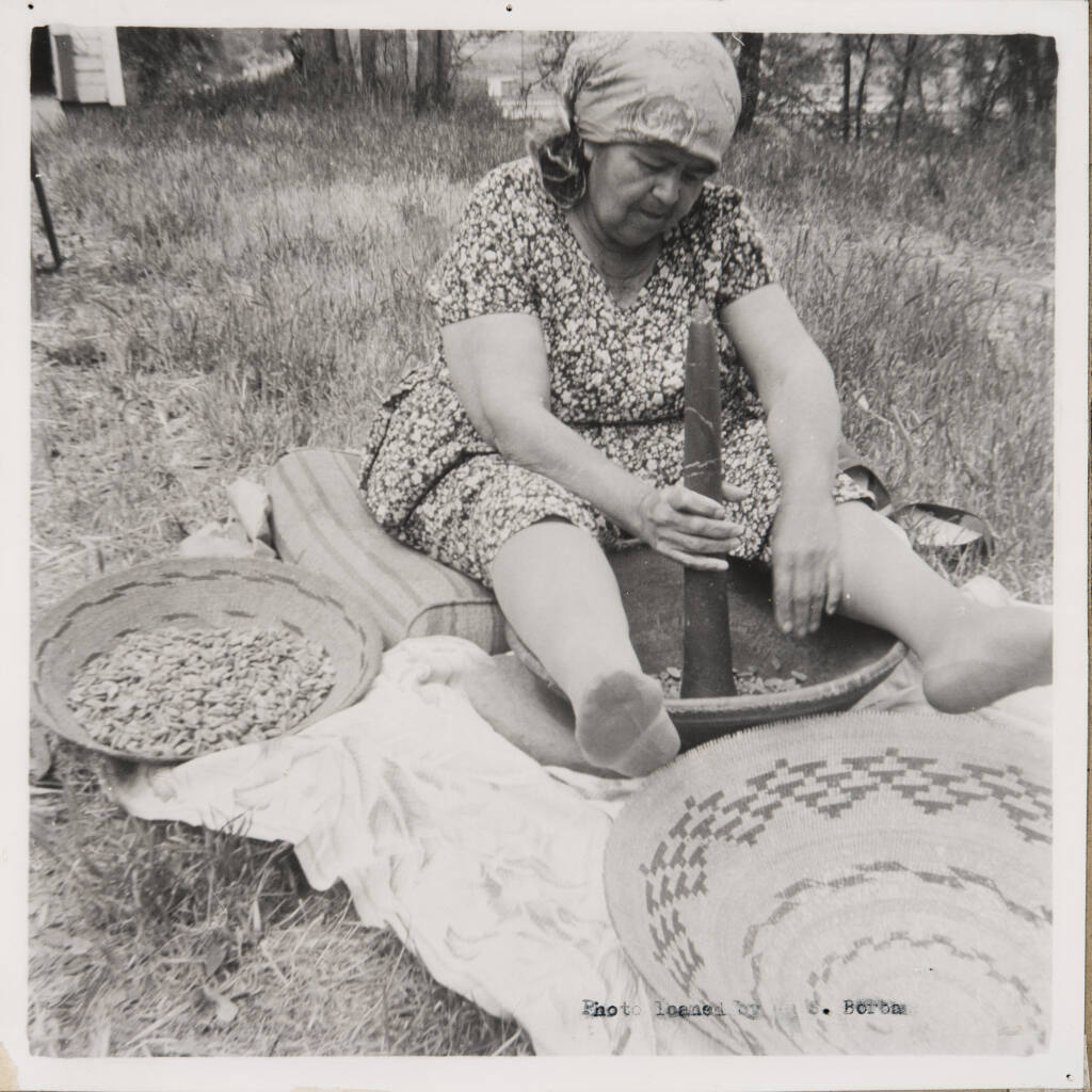 """Elsie Allen pounds acorns into flour in Ukiah in 1964. Whwn Allen contracted the flu during the 1918 flu epidemic, acorn mush cooked by her mother nourished her back to health, according to her 1972 book """"Pomo Basketmaking: A Supreme Art for the Weaver."""" (Sonoma County Library)"""
