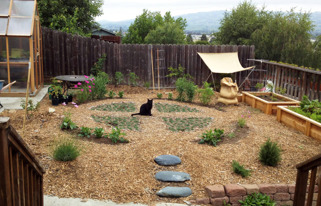 Homesterad with water friendly garden; recently owners Michelle and Craig installed a laundry-to-landscape graywater system, which provides irrigation to half a dozen fruit trees.