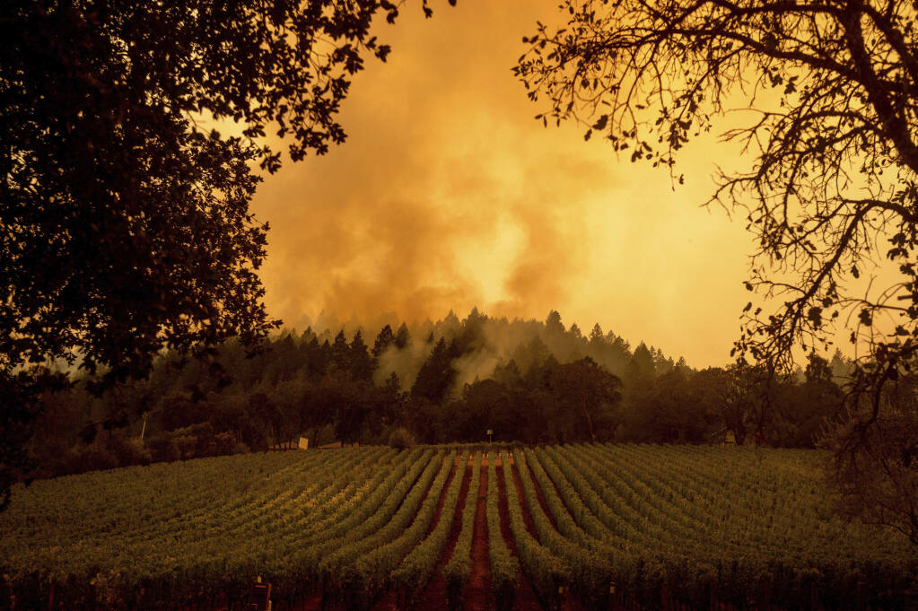 Smoke rises over a vineyard as the Glass Fire burns on Monday, Sept. 28, 2020, in Calistoga, Calif. (AP Photo/Noah Berger)