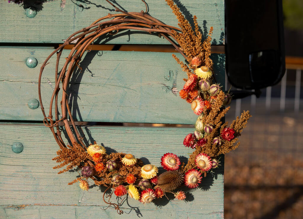 A grapevine wreath decorated with dried strawflowers, nigella, thistle and amaranth is displayed at Blossom and Bine farm in Santa Rosa on Thursday, Nov. 12, 2020. (Alvin A.H. Jornada / The Press Democrat)